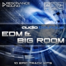 Audio Boutique EDM and Big Room - пакет сэмплов в стиле Progressive House
