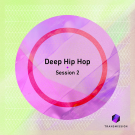 Deep Hip-Hop Session vol.2 - лупы, one-shot сэмплы, MIDI, Sylenth пресеты для Hip-Hop