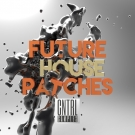 Future House Patches - более 100 мелодичных Spire пресетов для Future House